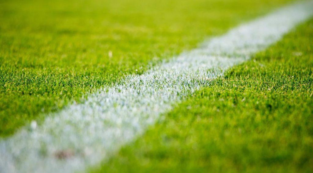 Leicester - Slavia Praga. Typy bukmacherskie (25 lutego, czwartek)