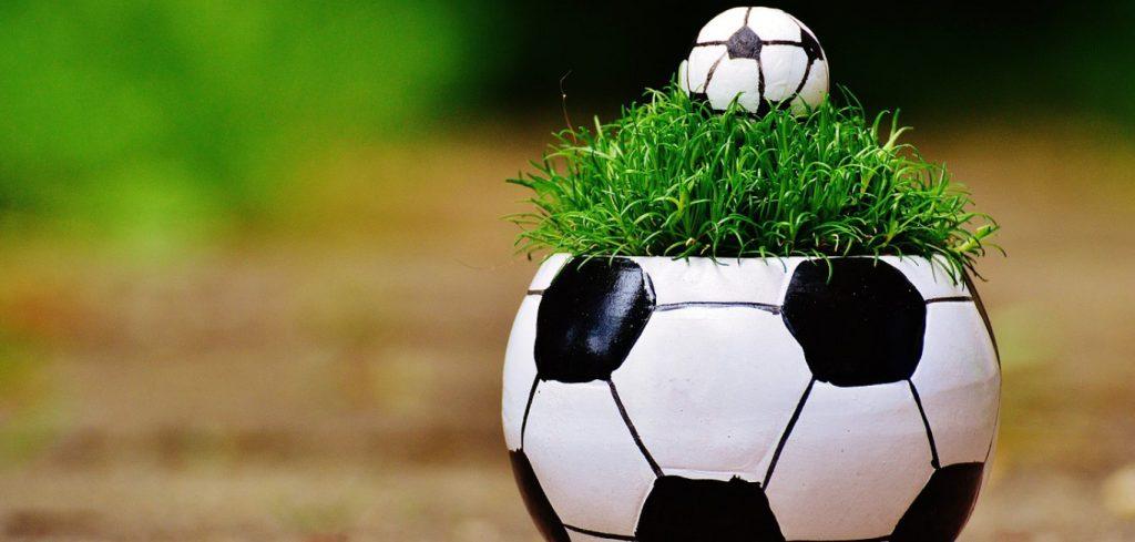 Dynamo - Benfica (Liga Mistrzów) typy bukmacherskie